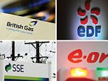 Undated file photos of the logos for the Big Six energy companies (top row from left) British Gas, EDF, RWE npower, (bottom row from left) SSE, E.ON and ScottishPower, as research suggests that disgruntled customers are ditching the energy giants in their droves as smaller independent suppliers continue to erode their market share.