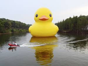 22 September 2015: Workers travel on a speed boat past an inflatable Rubber Duck installation by Dutch artist Florentijn Hofman, on a lake at a botanic garden in Changsha, Hunan province, China. The 18-metre-high Rubber Duck will be shown to the public in the garden from 21 September to 22 November 2015