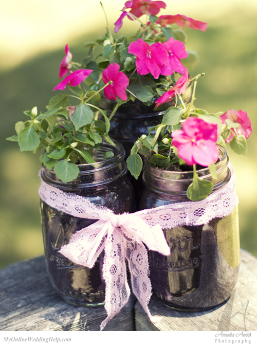 planted flowers in mason jars
