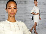 Mandatory Credit: Photo by Matt Baron/REX Shutterstock (5168518bz)\n Zoe Saldana\n Go90 Sneak Peek event, Los Angeles, America - 24 Sep 2015\n \n