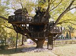 October 2005, Minnesota, USA --- Tree House in St. Louis Park --- Image by © Andrea Rugg/Beateworks/Corbis