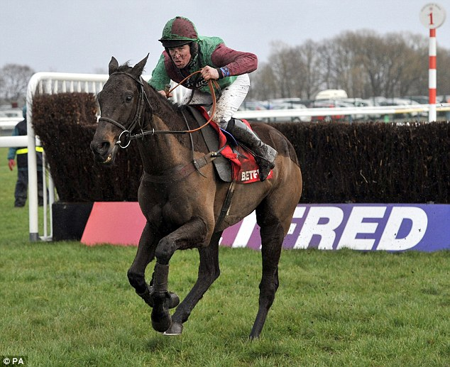 On his own: Rigadin De Beauchene is clear of his rivals after the last fence