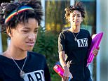 EXCLUSIVE: Willow Smith appears to have a nose ring as she is seen leaving a market in Calabasas, CA.  Willow was wearing red and black pants and multi colored headband. It's been reported that Willow signed on with the same agency as Kendall Jenner.\n\nPictured: Willow Smith\nRef: SPL1141844  011015   EXCLUSIVE\nPicture by: Splash News\n\nSplash News and Pictures\nLos Angeles: 310-821-2666\nNew York: 212-619-2666\nLondon: 870-934-2666\nphotodesk@splashnews.com\n