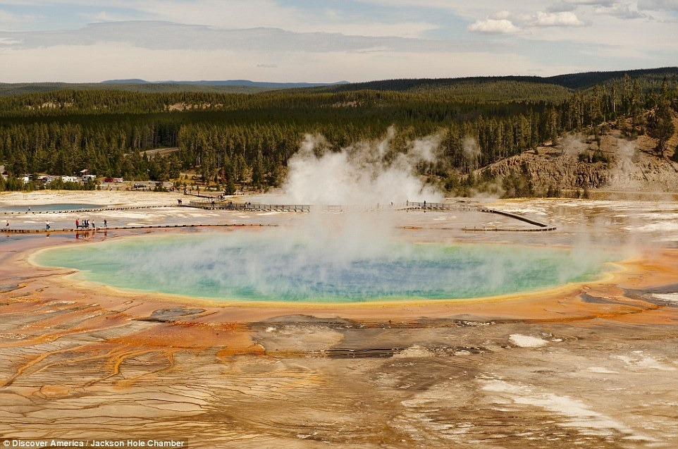 Yellowstone National Park boasts hot springs, geysers and abundant wildlife, including grizzly bears, wolves and herds of bison and elk