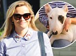 Please contact X17 before any use of these exclusive photos - x17@x17agency.com   Reese Witherspoon is all smiles after grabbing lunch in Brentwood with pal Jeffrey Katzenberg. October 7, 2015 X17online.com EXCLUSIVE