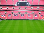 LONDON, ENGLAND - FEBRUARY 23 :   General view of the pitch during a Carling Cup Final preview at Wembley Stadium on February 23, 2011 in London, England.  (Photo by Jan Kruger - The FA/The FA via Getty Images)