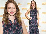 EAST HAMPTON, NY - OCTOBER 11:  Actress  Emily Blunt attends A Conversation WithEmily Blunt on Day 4 of the 23rd Annual Hamptons International Film Festival on October 11, 2015 in East Hampton, New York.  (Photo by Monica Schipper/Getty Images For Hamptons International Film Festival)
