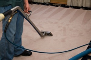 home carpet cleaners13