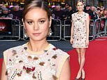 11 Oct 2015 - LONDON - UK  STAR OF THE FILM BRIE LARSON ATTENDS THE PREMIERE OF ROOM AT THE VUE CINEMA IN LEICESTER SQUARE AS PART OF THE LONDON FILM FESTIVAL.   BYLINE MUST READ : XPOSUREPHOTOS.COM  ***UK CLIENTS - PICTURES CONTAINING CHILDREN PLEASE PIXELATE FACE PRIOR TO PUBLICATION ***  **UK CLIENTS MUST CALL PRIOR TO TV OR ONLINE USAGE PLEASE TELEPHONE   44 208 344 2007 **
