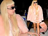 Lady Gaga arrives at JFK airport in New York City wearing a pink mink coat. Her pink scarf  dropped on floor as she made her way through the doors.\n\nPictured: Lady Gaga\nRef: SPL1149886  121015  \nPicture by: @JDH Imagez / Splash News\n\nSplash News and Pictures\nLos Angeles: 310-821-2666\nNew York: 212-619-2666\nLondon: 870-934-2666\nphotodesk@splashnews.com\n