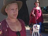 EXCLUSIVE. Coleman-Rayner. Santa Barbara, CA, USA.\nOctober 10, 2015\nA makeup free Pink is spotted taking her dog to the veterinarian over the weekend. The pop singer went casual in a loose fitting top, jeans, and hat during the outing.\nCREDIT LINE MUST READ: Coleman-Rayner\nTel US (001) 310-474-4343- office\nTel US (001) 323-545-7584 - Mobile\nwww.coleman-rayner.com