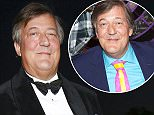 ZURICH, SWITZERLAND - SEPTEMBER 24: Stephen Fry attends the opening ceremony of the Zurich Film Festival on September 24, 2015 in Zurich, Switzerland. The 11th Zurich Film Festival will take place from September 23 until October 4.  (Photo by Franziska Krug/Getty Images for Audi)
