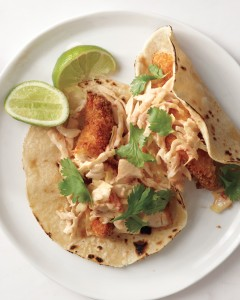 Quick Mex and Tex-Mex Chicken Recipes