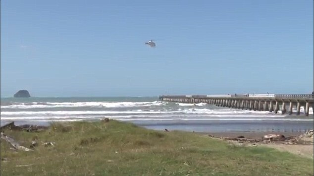 The incident took place at Tolaga Bay Wharf, north of Gisborne, on New Zealand's East Coast