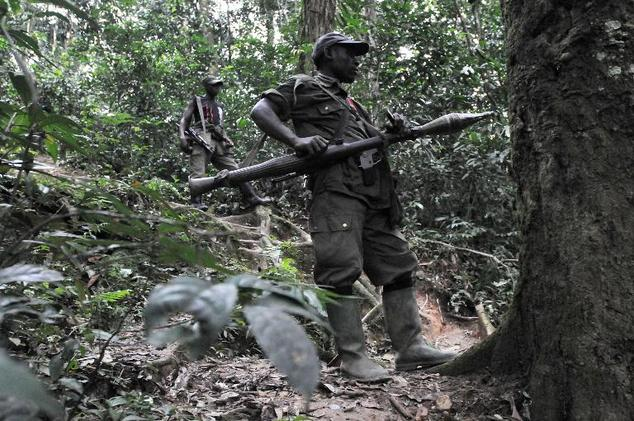 Two Rwandan Hutu rebels of the FDLR (Democratic Force for the Liberation of Rwanda) stand in dense forest outside Pinga, 150kms north west of Goma on Februar...
