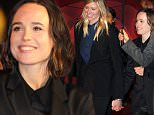 10th Rome Film Festival - 'Freeheld' - Premiere\nFeaturing: Ellen Page\nWhere: Rome, Italy\nWhen: 18 Oct 2015\nCredit: IPA/WENN.com\n**Only available for publication in UK, USA, Germany, Austria, Switzerland**