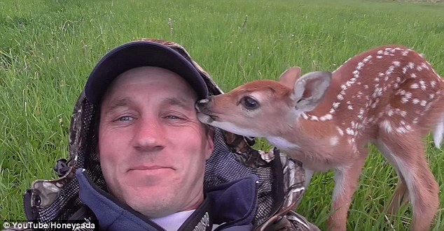 A man named Darius, who is believed to live near Yellowstone National Park, rehabilitated a fawn last spring