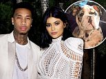 LOS ANGELES, CA - OCTOBER 23:  Tyga and Kylie Jenner attend Olivier Rousteing & Beats Celebrate In Los Angeles at Private Residence on October 23, 2015 in Los Angeles, California.  (Photo by Stefanie Keenan/Getty Images for Apple)