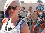 Picture Shows: Kingston Rossdale, Gwen Stefani, Apollo Rossdale  October 24, 2015\n \n Singer, Gwen Stefani takes her boys Kingston, Zuma and Apollo to Shawn's Pumpkin Patch in Los Angeles, California. The boys had a good time riding ponies and Gwen bought Kingston a bird.\n \n Non-Exclusive\n UK RIGHTS ONLY\n \n Pictures by : FameFlynet UK © 2015\n Tel : +44 (0)20 3551 5049\n Email : info@fameflynet.uk.com