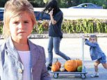 penelope disick kourtney kardashian pumpkin patch