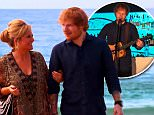 Ed Sheeran Home And Away\n