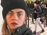 UK CLIENTS MUST CREDIT: AKM-GSI ONLY EXCLUSIVE: Los Angeles, CA - English fashion model Cara Delevingne departs from Los Angeles International Airport.  Pictured: Cara Delevingne Ref: SPL1164516  291015   EXCLUSIVE Picture by: AKM-GSI / Splash News