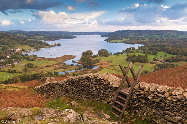 Experts say there have been a number of sightings of red squirrels in Windermere, in the picturesque Lake District (pictured)