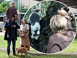 WARNING: Embargoed for publication until 00:00:01 on 03/11/2015 - Programme Name: EastEnders - TX: 10/11/2015 - Episode: 5171 (No. n/a) - Picture Shows: Mick and Shirley get their cat rescue underway to save Carmel's cat! Shirley Carter (LINDA HENRY), Mick Carter (DANNY DYER), Lady Di (Hotlips), Carmel (BONNIE LANGFORD) - (C) BBC - Photographer: Kieron Mccarron embargo