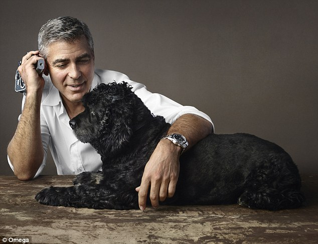 Best friends: George Clooney speaks about senior dog Einstein's 'beautiful life'in the new book My Old Dog: Rescued Pets With Remarkable Second Acts. Here they are pictured together in an Omega campaign