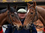 Paul Nicholls with Zarkander (L) and Silviniaco Conti during a stable visit to Manor Farm Stables in Shepton Mallet, England.   SHEPTON MALLET, ENGLAND - FEBRUARY 20:   (Photo by Scott Heavey/Getty Images)