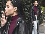 NEW YORK, NY - NOVEMBER 02:  (EXCLUSIVE COVERAGE) Zoe Kravitz is seen in Soho on November 2, 2015 in New York City.  (Photo by Alo Ceballos/GC Images)