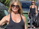 Picture Shows: Goldie Hawn  November 03, 2015    Actress, Goldie Hawn is spotted out for a stroll with a friend in Brentwood, California. Goldie, who claims to be retired as an actress has spent her last couple of years enjoying time with her family.    Exclusive - All Round  UK RIGHTS ONLY    Pictures by : FameFlynet UK © 2015  Tel : +44 (0)20 3551 5049  Email : info@fameflynet.uk.com