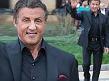 "Sylvester Stallone, Michael B. Jordan and Tessa Thompson return to The Philadelphia Museum of Art ""Rocky Steps"" for special press conference to promote their film ""Creed"" on November 6, 2015 in Philadelphia, PA\n\nPictured: Sylvester Stallone\nRef: SPL1167655  061115  \nPicture by: Ouzounova/Splash News\n\nSplash News and Pictures\nLos Angeles: 310-821-2666\nNew York: 212-619-2666\nLondon: 870-934-2666\nphotodesk@splashnews.com\n"