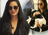 """Olivia Munn is all smiles with her adorable dog, Chance upon their arrival in Los Angeles.  The adorable star of """"The Newsroom"""" was seen carrying her dog at LAX.\n\nPictured: Olivia Munn\nRef: SPL1172475  091115  \nPicture by: Splash News\n\nSplash News and Pictures\nLos Angeles: 310-821-2666\nNew York: 212-619-2666\nLondon: 870-934-2666\nphotodesk@splashnews.com\n"""