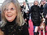 "Actress Diane Keaton attends the LA Premiere of ""Love The Coopers"" held at The Grove on Thursday, Nov. 12, 2015, in Los Angeles. (Photo by Richard Shotwell/Invision/AP)"