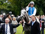 CHICHESTER, ENGLAND - JULY 29:  Winner of the Qatar Sussex Stakes, Maxime Guyon on horse Solow, on day two of the Qatar Goodwood Festival at Goodwood Racecourse on July 29, 2015 in Chichester, England.  (Photo by Tristan Fewings/Getty Images for Qatar Goodwood Festival)