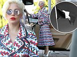 Picture Shows: Lady Gaga  November 14, 2015\n \n Singer and actress Lady Gaga makes a bold fashion statement to support France in a red, white and blue Chanel dress while shopping in Hollywood, California. Gaga is in Los Angeles filming the next season of 'American Horror Story'.\n \n Exclusive All Rounder\n UK RIGHTS ONLY\n FameFlynet UK © 2015\n Tel : +44 (0)20 3551 5049\n Email : info@fameflynet.uk.com