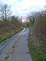 The Road down to Alkborough Flats - geograph.org.uk - 352110.jpg