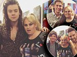 Rebel Wilson and One Direction.jpg