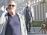 EXCLUSIVE: Pierce Brosnan takes his dog for a walk in Malibu, CA  Pictured: Pierce Brosnan Ref: SPL1178941  181115   EXCLUSIVE Picture by: Splash News  Splash News and Pictures Los Angeles: 310-821-2666 New York: 212-619-2666 London: 870-934-2666 photodesk@splashnews.com