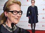 Mandatory Credit: Photo by MediaPunch/REX Shutterstock (5403046b)\n Meryl Streep\n Christopher and Dana Reeve Foundation 'A Magical Evening', New York, America - 19 Nov 2015\n \n