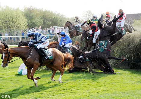 Chaos: Horses falling at Bechers Brook during April's Grand National