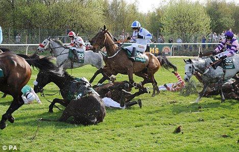 Mayhem: The Grand National was marred by the death of two horses this year