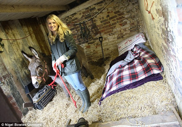 Festive accommodation: Mrs Turton's daughter-in-law Abbi Broadbent is pictured in the donkey's stable that's converted into a £12-a-night room