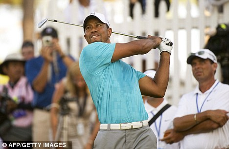 Back in the swing: Tiger Woods during his practice round on Wednesday at Atlanta Athletic Club