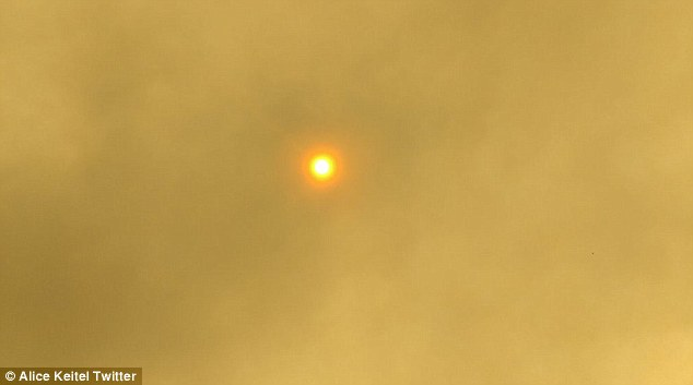 The smoke covered the sky on Sunday, casting a a thick yellowish smoke over the Esperance area