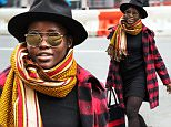 Lupita Nyong'o is all wrapped in an orange scarf and red flannel jacket in NYC\n\nPictured: Lupita Nyong'o\nRef: SPL1182423  221115  \nPicture by: Jackson Lee / Splash News\n\nSplash News and Pictures\nLos Angeles: 310-821-2666\nNew York: 212-619-2666\nLondon: 870-934-2666\nphotodesk@splashnews.com\n