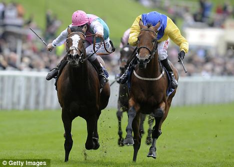Holding on: Tony Hamilton riding Mickdaam (right) wins the Chester Vase from Model Pupil