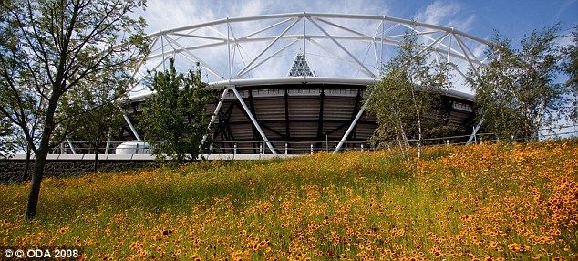 A meadow of cornflower, corn marigold, Californian poppy and prairie flowers, blooms around the Olympic Stadium.