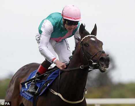 Gold standard: Famous Name will take in the Tattersalls Gold Cup